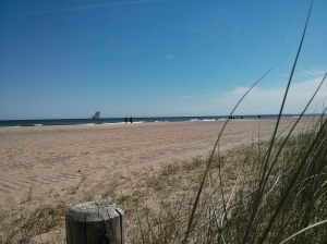 Weidenfelder Strand